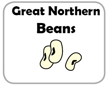 Great Northern Beans Commodity Image